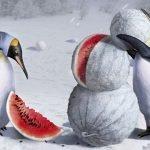 Морозоустойчивость разных народов — юмор и анекдоты про зиму