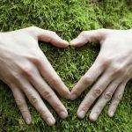 Ладошки-пальчики:  о чем расскажут ваши руки