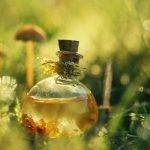 Касторовое масло для вашей красоты (рецепты и советы)