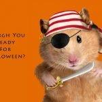 Анекдоты, приколы и юмор и страшилки  к Хэллоуину