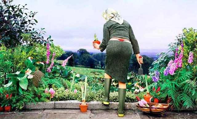 Ах, дача! -большая подборка веселых садово-огородных стихов