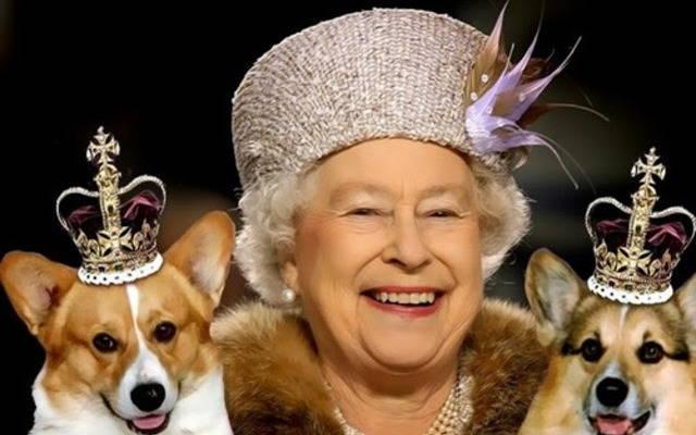 Все бабы как бабы, а я - Королева! - коллекция стихов