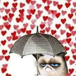 Полюбила… —  частушки и кричалки на День святого Валентина