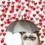 Полюбила… — частушки ко Дню Св. Валентина