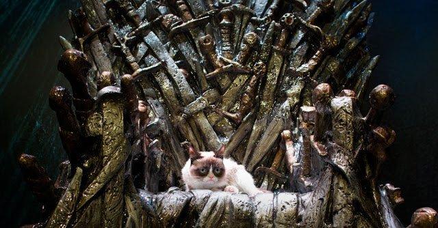 «Игра престолов» в кошачьем и собачьем исполнении и другой юмор