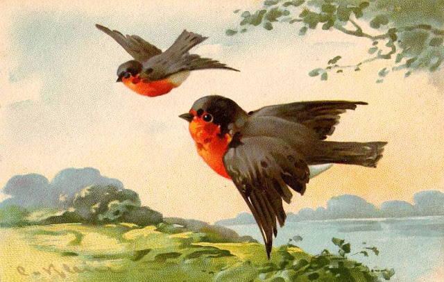 Катарина Кляйн (Catharina Klein, 1861 — 1929) — Главная «Цветочница» Германии. Птицы и бабочки