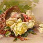 "Катарина Кляйн (Catharina Klein, 1861 - 1929) - Главная ""Цветочница"" Германии. Розы"