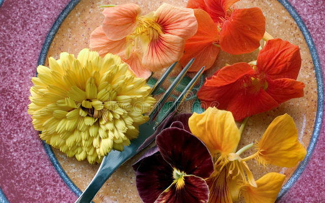 От цветов на которые смотрят к цветам которые едят, цветы, съедобные цветы, травы, съедобные травы, какие цветы можно есть, какие цветы нельзя есть, цветы в кулинарии, съедобный букет, какие цветы можно добавлять в еду, советы кулинарные, экзотическая кулинария, еда, кулинария, едят ли цветы, как есть цветы, рецепты из цветов, как добавлять цветы в еду, съедобные цветы, съедобные цветы в кулинарии, живые цветы в дизайне, съедобные цветы для женщин, съедобные комнатные растения, какие бывают цветы для кулинарии, цветы в кулинарии, цветы для украшения блюд, вкусные цветы, как сделать съедобный букет, настурция, съедобные букеты, какие цветы можно есть, какие цветы нельзя есть, пион, какие цветы пригодны в пищу, съедобные цветки в горшке, съедобные цветки растений, съедобные цветки кактуса, съедобные цветки лилии, съедобные цветки гибискуса, настурция цветки съедобные, какие цветы можно есть, какие части цветков можно есть, ядовитые цветки, как есть цветы, декор блюд съедобными цветами,От цветов на которые смотрят к цветам которые едят, цветы, съедобные цветы, травы, съедобные травы, какие цветы можно есть, какие цветы нельзя есть, цветы в кулинарии, съедобный букет, какие цветы можно добавлять в еду, советы кулинарные, экзотическая кулинария, еда, кулинария, едят ли цветы, как есть цветы, рецепты из цветов, как добавлять цветы в еду,