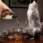 Фу, какая гадость! - самые опасные, ужасные или странные напитки в мире