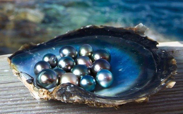Как рождается ожерелье: секреты натурального жемчуга